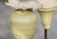 Trädgårdsprydnader i keramik olika färger och former, inkl. järnpinne